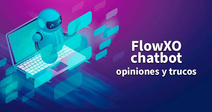 Probamos Flow XO chatbot
